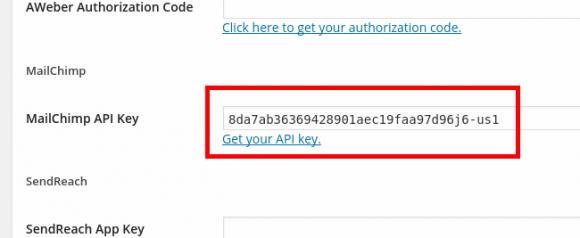 MailChimp API Key