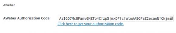 Paste authorization code